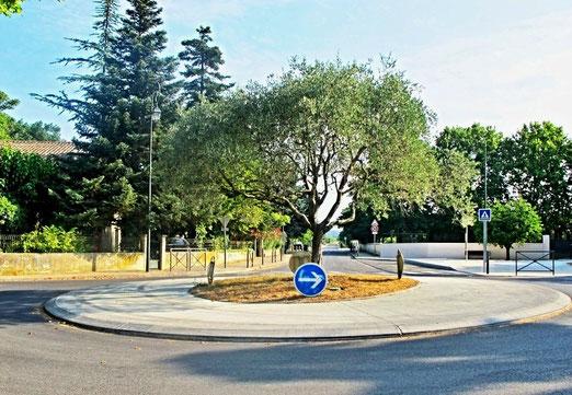 Kreisel im südfranzösischen Dorf Bourdic (360 Einewohner) - Schlicht und einfach: ein Olivenbaum