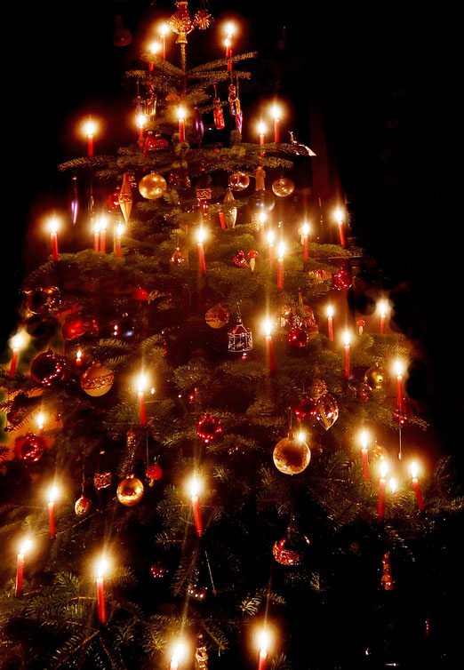 25. Dezember 2018 - Den Weihnachtsbaum gibt es seit dem 15. Jahrhundert. Allein in Deutschland werden Jahr für Jahr rund 20 Millionen Tannen in die Stuben gebracht und  geschmückt.