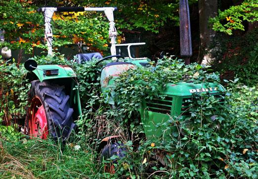 20. Oktober 2020 - Denkmal für den Landwirt ohne Subventionen