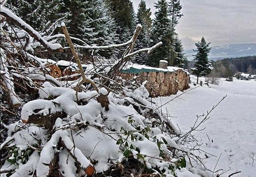 08. Januar 2021 - Holz vor der Tür