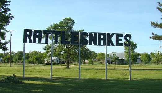 Grosse Schilder warnen uns immer wieder vor Rattlesnakes (Klapperschlangen).