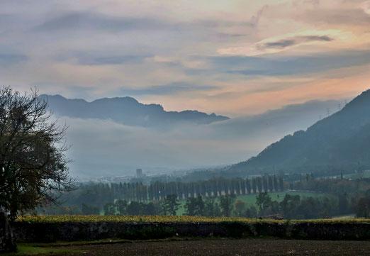 23. Oktober 2019 - Nebel kämpft gege die Sonne oder die Sonne gegen den Nebel.