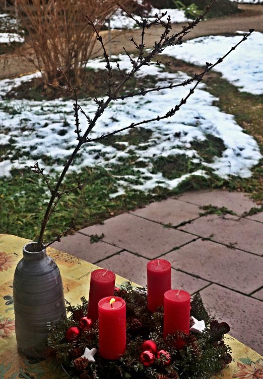 04. Dezember 2020 - Barbarazweig, Nach der Überlieferung blieb die Heilige Barbara auf dem Weg in das Gefängnis an einem Zweig hängen, Sie stellte ihn in ein Gefäß mit Wasser, und er blühte genau an dem Tag, an dem sie das Martyrium erlitt