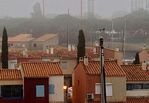 23. Juli 2021 - Hafen im Nebel versunken