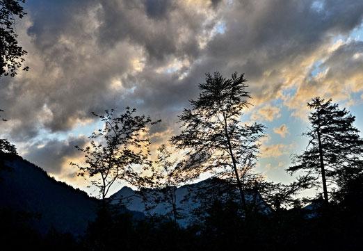 09. August 2019 - Wo Berge, Bäume, Wolken, Wind und Wetter sich treffen