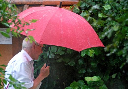 29. August 2021 - Stürmische Zeiten