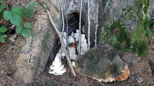 Anonymer Weihnachtsgruss im Wald  (Foto: Saskia Züllig)