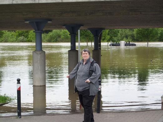 Hochwasser-Verkäufer JF