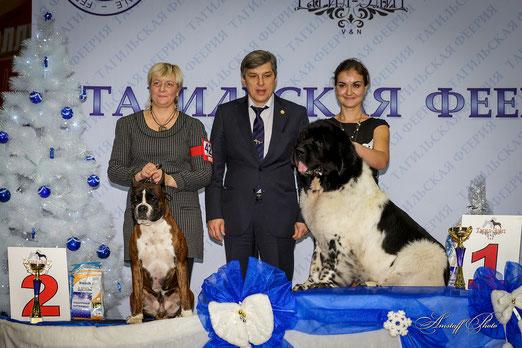 БЕСТ ГРУПП 1 место на выставке в г.Нижний Тагил , 8 декабря 2013г.