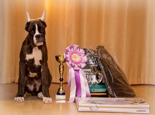 Жошуа 2 место ан Бест Беби.