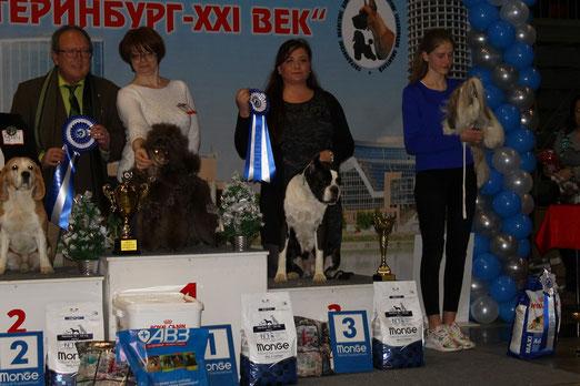 Бест Ветеранов 3 место на Международной выставке 3 декабря 2017 в Екатеринбурге