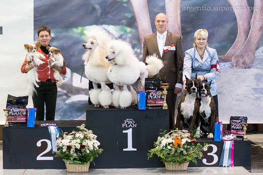 конкурс ПАР на Международной выставке 17.11.13 в г.Екатеринбург.