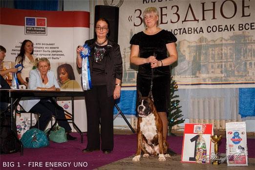 БЕСТ ГРУПП 1 место! на выставке 15.12.13 в г.Екатеринбург.