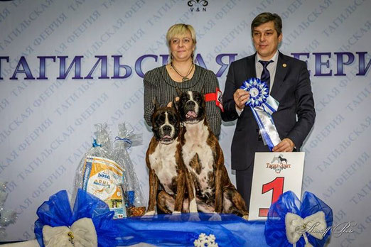 Конкурс ПАР на выставке 22.12.13. Файр Энерджи Уно и его дочь Галадриэль из мира Анжелики.