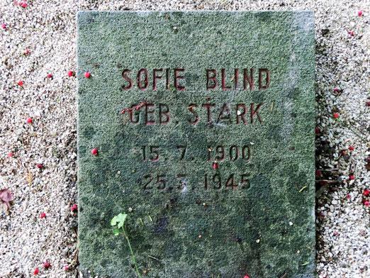 Das Grab von Sofie Blind auf dem Alten Friedhof in Nürtingen (Foto: Schaude)