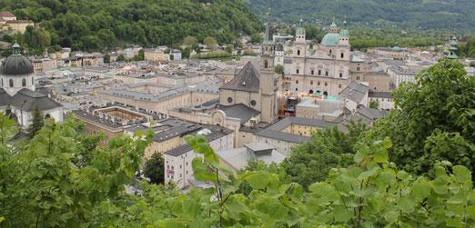 Visit Salzburg