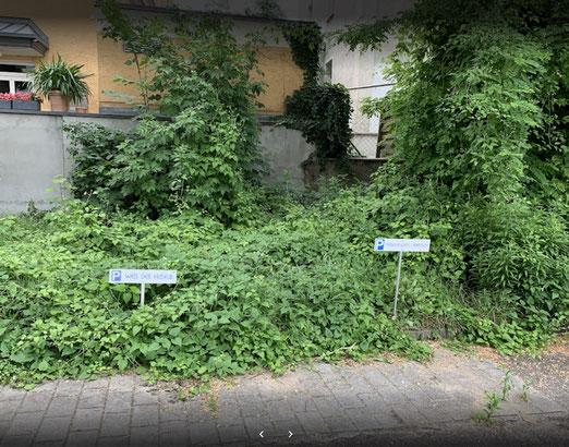 reservierte Parkplätze im Hof
