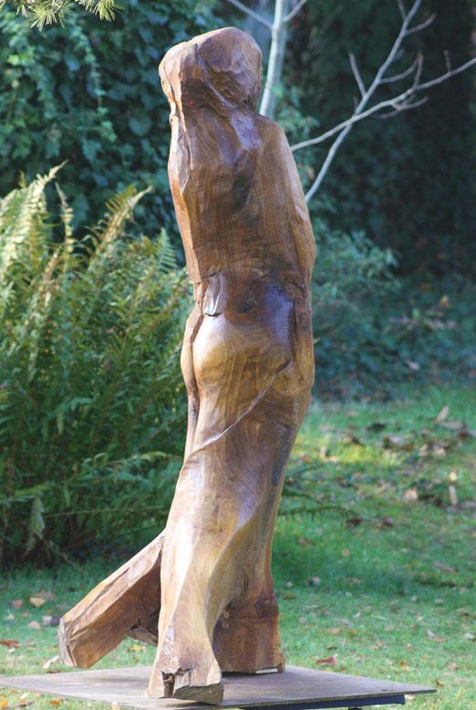 Boommeermin  Notelaar  165 cm