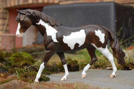 """Peter Stone DAH Pony"""