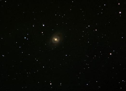 Galaxia Espiral Barrada M95. Neil Chase.