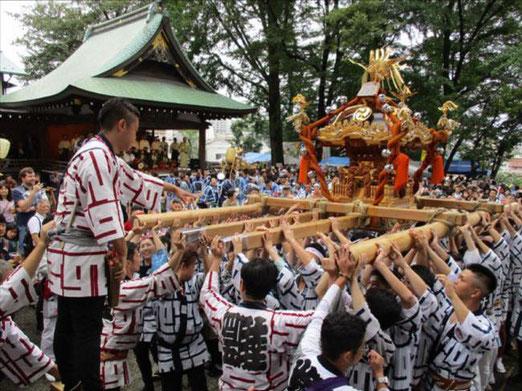 北澤八幡神社,下北沢,令和2年,宮入り,2020,神輿渡御,開催中止