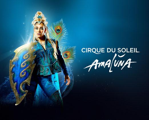 Cirque du soleil 2015 à Paris - AMALUNA