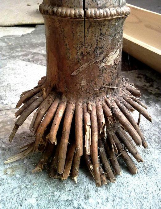SpontaneoDesign promuove il bambù urbano quale miglior carbon sink. Broken Nature, 25 giugno dalle 15:00 alle 17:00 Triennale di Milano. Foto: spontaneodesign 2011
