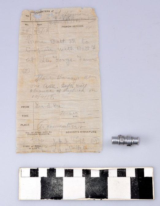 Brieftaube hat Nachricht überbracht im Ersten Weltkrieg, Brieftaubenverband, Brieftauben im 1. Weltkrieg
