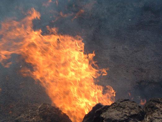 Vulkanfeuer