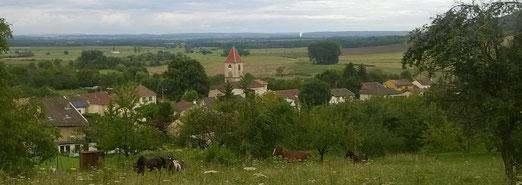 Le Domaine se trouve à Pagney-derrière-Barine 54200