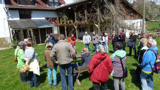 Frühlingskräuterwanderung am 30. April mit über 30 begeisterten Teilnehmern