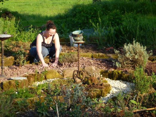 Anlage eines Schotterbeets für mediterrane Kräuter