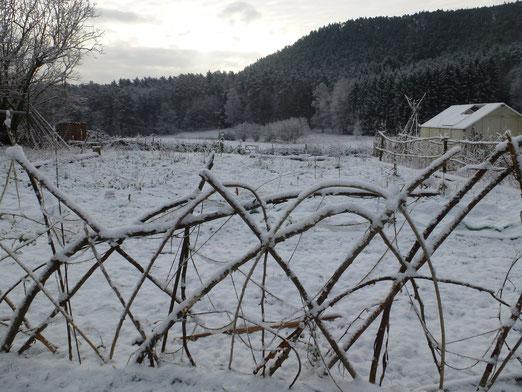 Der Garten in FRau Holles weißem Mantel