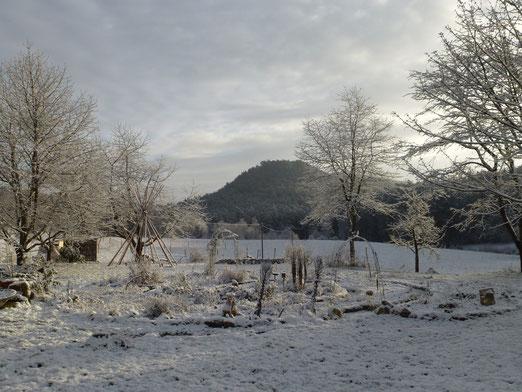 Biotopia im Winterschlaf
