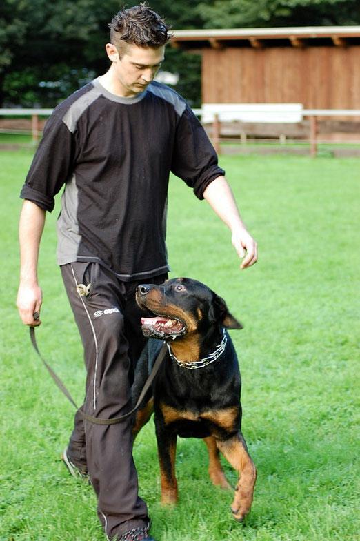 Alessandro mit Barny