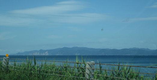 陸奥湾越しに臨む下北半島とトンボ