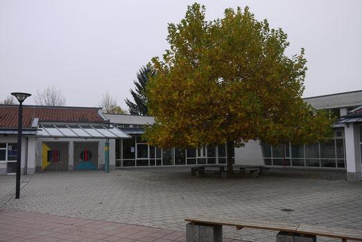 Blick auf das Schulgelände von der Ziegelei-Straße aus