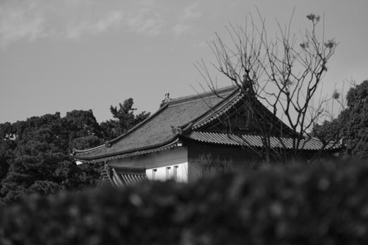皇居のお堀の手前まで早足で散歩。都心にお城の不思議さ