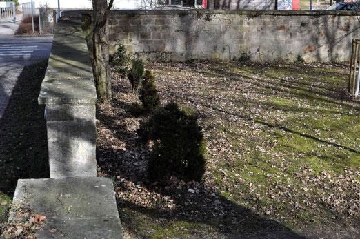 """Die so genannten """"Russengräber"""" auf dem Alten Friedhof am Neckar im Jahr 2013, Foto: Manuel Werner, alle Rechte vorbehalten!"""