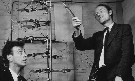 James Watson y Francis Crick junto a uno de sus modelos de la molécula del ADN en el Laboratorio Cavendish de Cambridge en 1953 / University of Cambridge