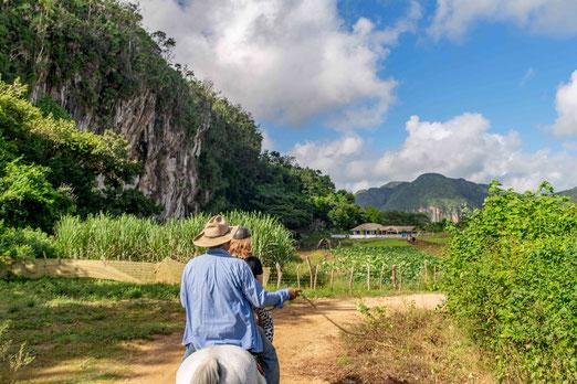 Vinales, Pinar del Rio in Cuba