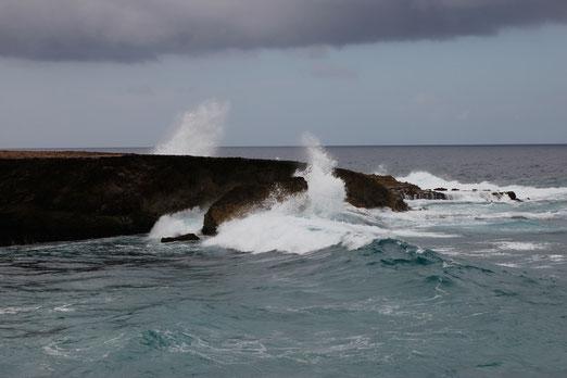 Jeeptour auf Aruba, offroad in Südamerika, Meer Karibik, Haie