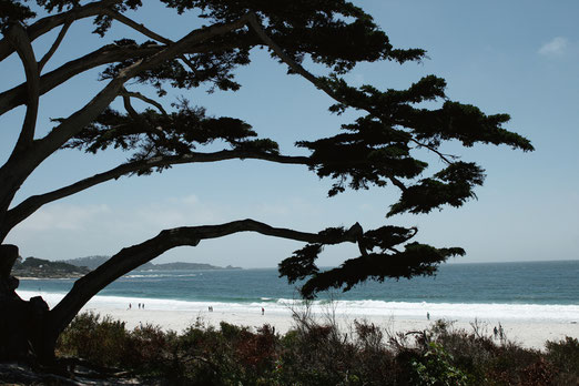 Carmel-by-the-Sea, Kalifornien, Roadtrip Highway 1, USA