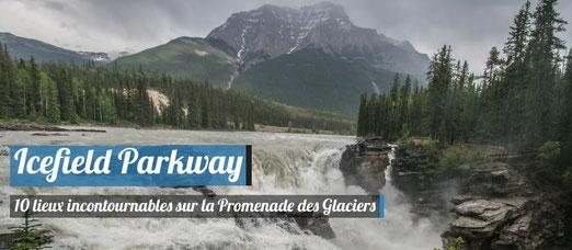 Les lieux incontournables à voir sur l'Icefield Parkway !
