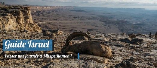 Nos conseils pour visiter Mitzpe Ramon - Crédit Photo : Trip85.Com