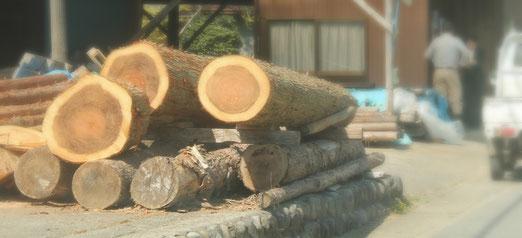 西多摩地区 林業