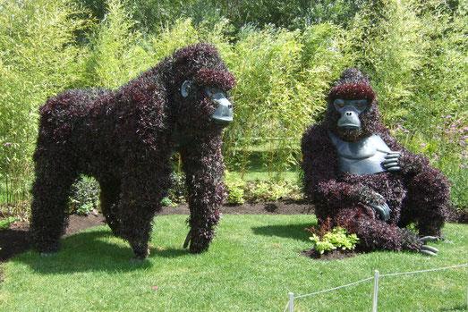 Mosaicultures Internationales:  Gorillas at Risk!