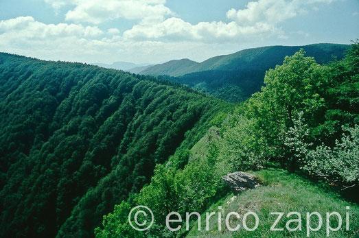 Il crinale da Monte Penna