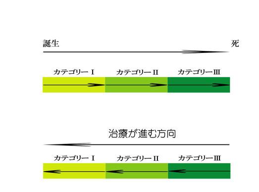 カテゴリーの図