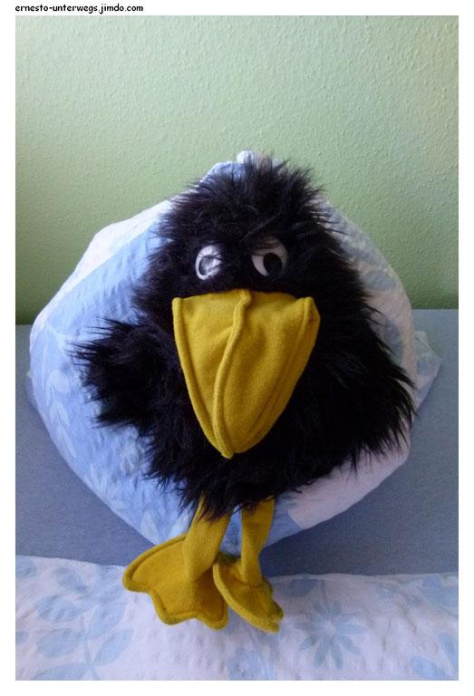 Ein Kopfkissen-Nest!